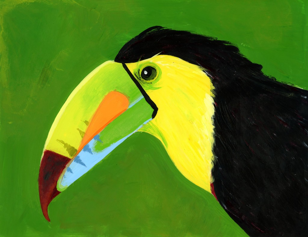 toucan_bird_march_2017_paint_the_night